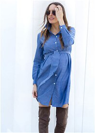 Seraphine - Abalina Chambray Shirt Dress