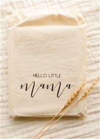 Blossom & Pear - Hello Little Mama Pregnancy Journal in Teal