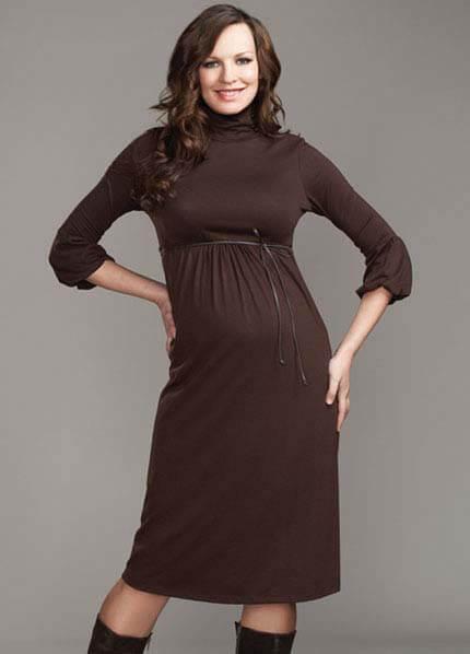 Queen Bee Lantern Sleeve Maternity Dress in Espresso by Maternal America